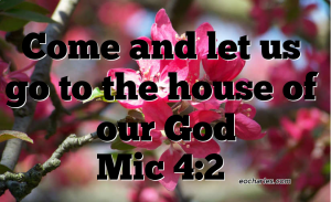 Come to the house of our God