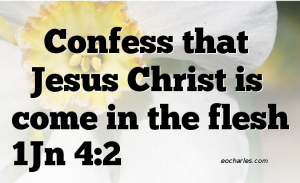 Confess that Jesus Christ is come in the flesh.