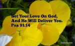 Set Your Love On God