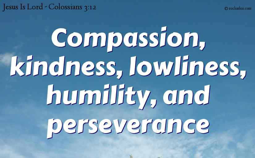 Compassion, kindness, lowliness, humility, and perseverance