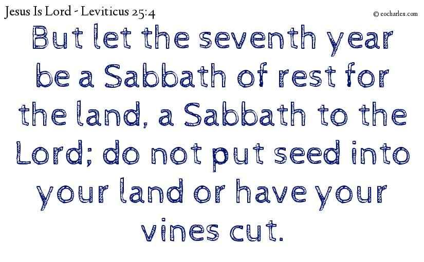 Year of Sabbath, Year Of Rest.