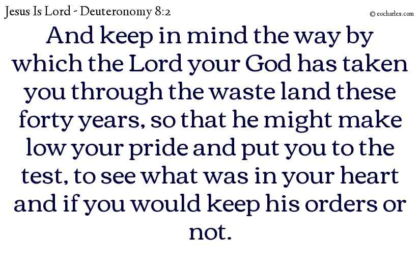 And keep in mind the way by which the Lord your God has taken you through the waste land these forty years, so that he might make low your pride and put you to the test, to see what was in your heart and if you would keep his orders or not.