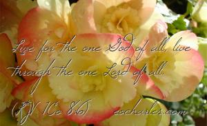 All For God, All Through Jesus