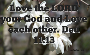 Love the LORD your God and Love each other.
