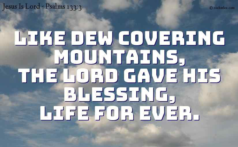 Like dew covering mountains,  The Lord gave his blessing,  life for ever.