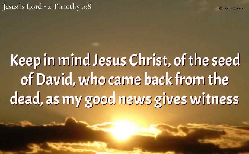 Keep in mind Jesus Christ, of the seed of David, who came back from the dead, as my good news gives witness