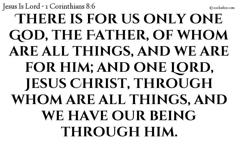 There is for us only one God, the Father, of whom are all things, and we are for him; and one Lord, Jesus Christ, through whom are all things, and we have our being through him.