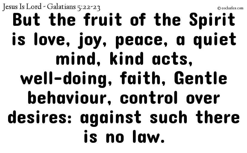But the fruit of the Spirit is love, joy, peace, a quiet mind, kind acts, well-doing, faith, Gentle behaviour, control over desires: against such there is no law.