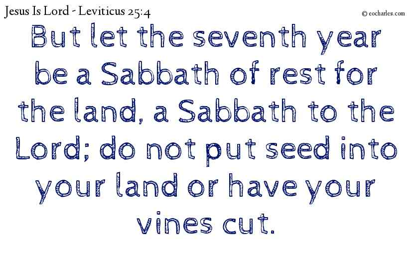 Year of Sabbath, Year Of Rest.