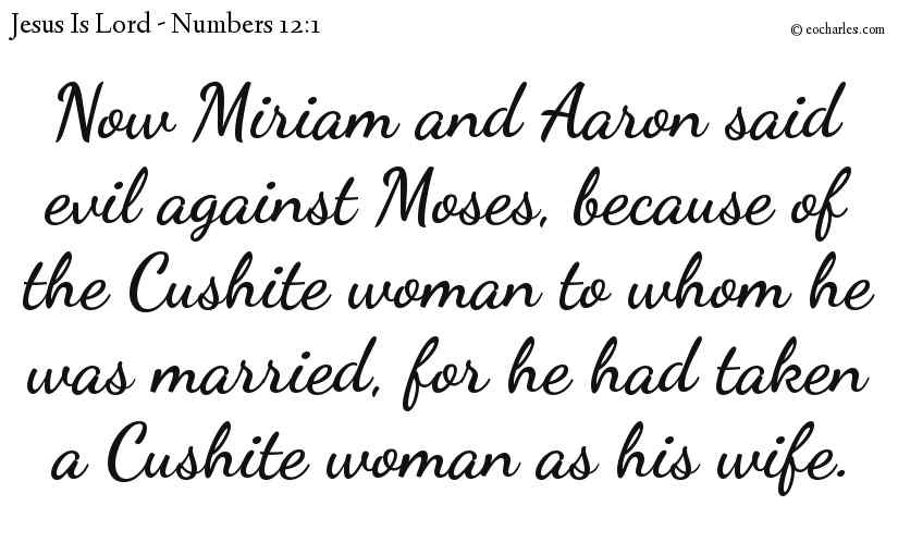 Now Miriam and Aaron said evil against Moses, because of the Cushite woman to whom he was married, for he had taken a Cushite woman as his wife.