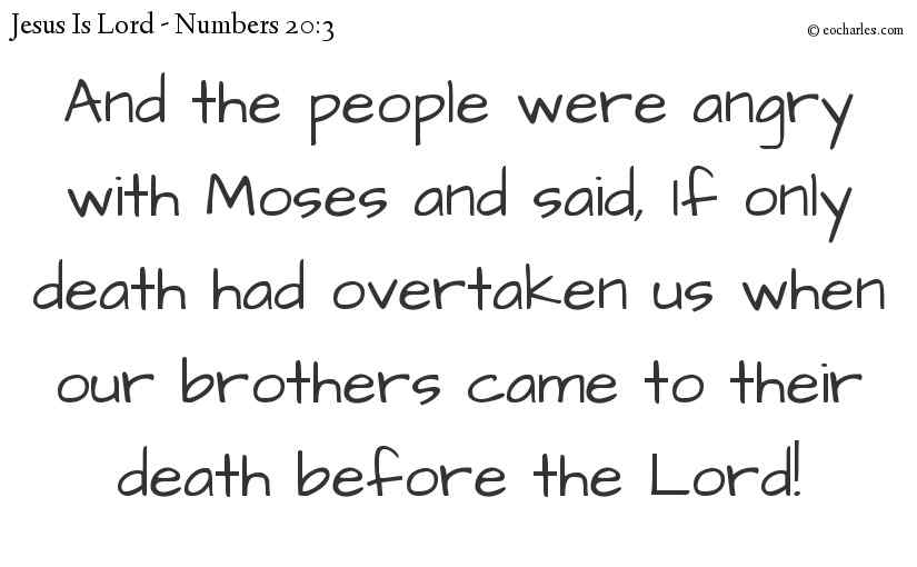 And the people were angry with Moses and said, If only death had overtaken us when our brothers came to their death before the Lord!
