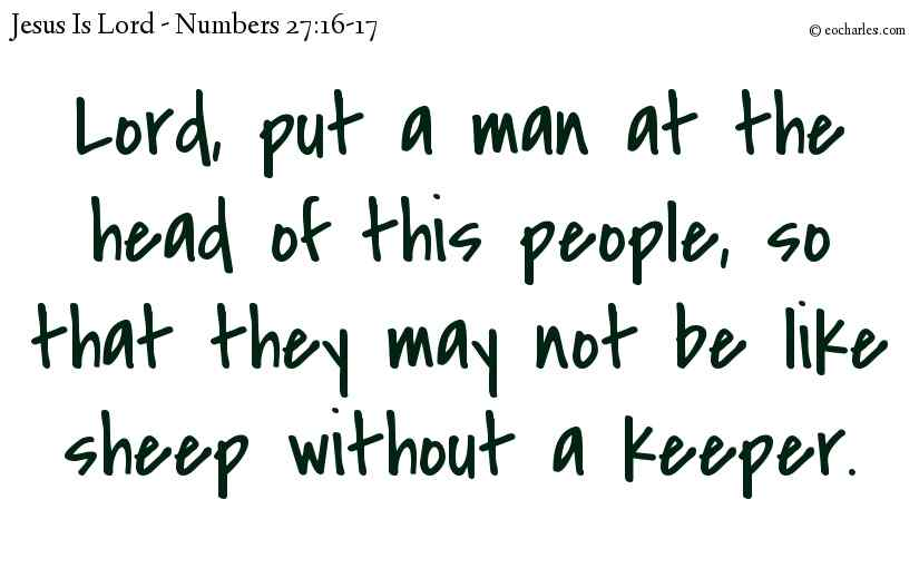 Lord, don't let the people be like sheep without a keeper.