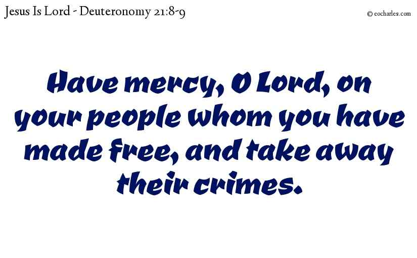 Have mercy, O Lord, on your people whom you have made free, and take away their crimes.