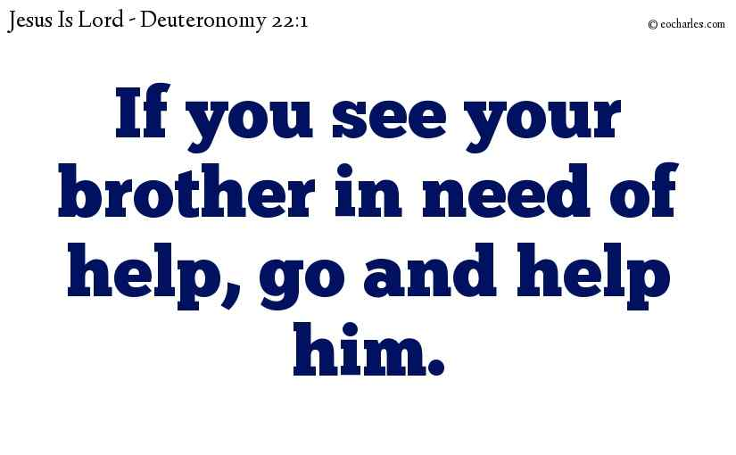 If you see your brother in need of help, go and help him.