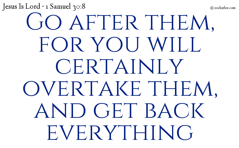 Go after them, for you will certainly overtake them, and get back everything