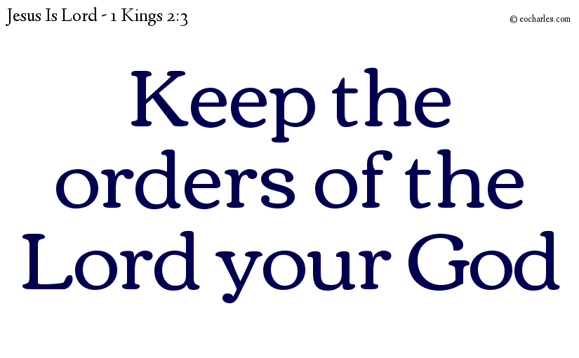 Keep the orders of the Lord your God