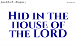 Hid in the Lord