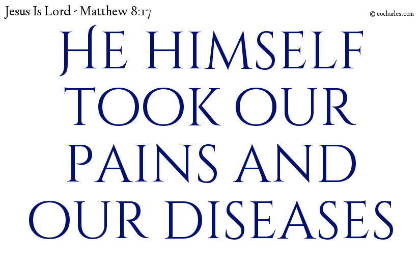 He himself took our pains and our diseases