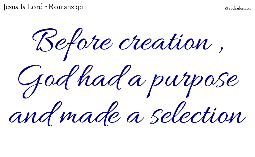 Before creation , God had a purpose and made a selection