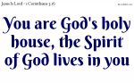 You are God's holy house