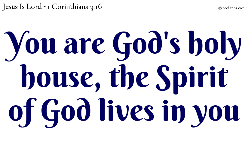 You are God's holy house, the Spirit of God lives in you