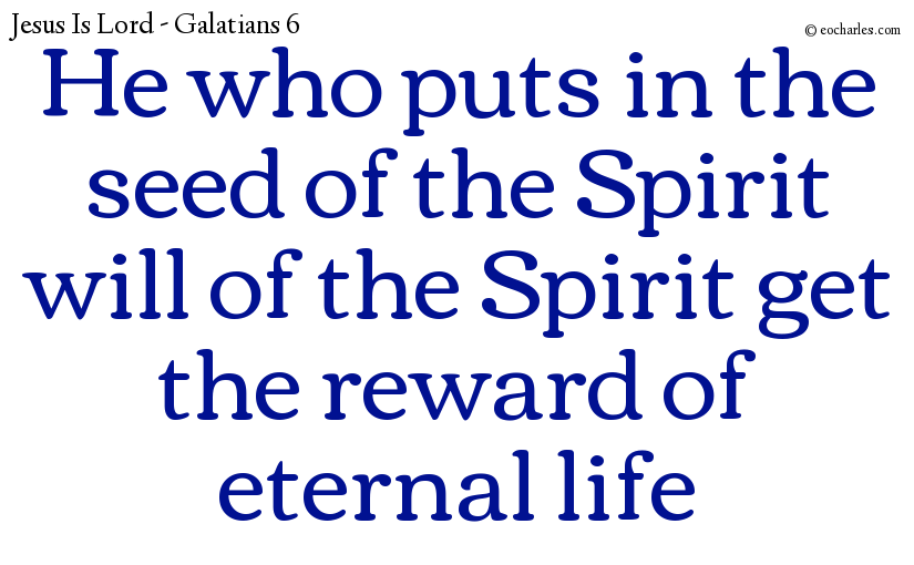 He who puts in the seed of the Spirit will of the Spirit get the reward of eternal life