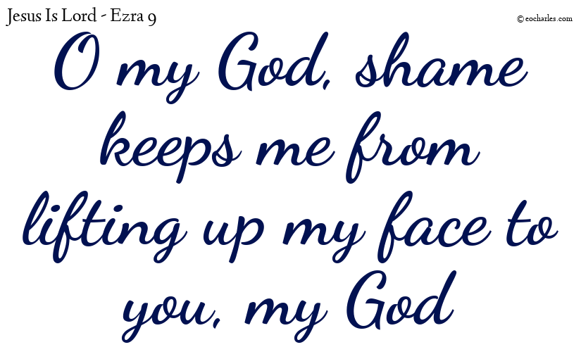 O my God, shame keeps me from lifting up my face to you, my God
