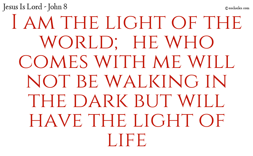 I am the light of the world; he who comes with me will not be walking in the dark but will have the light of life