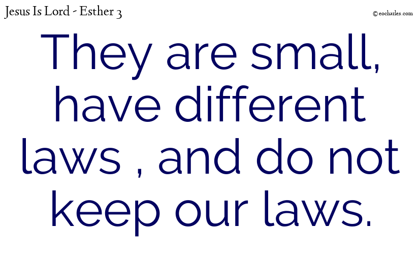 They are small, have different laws , and do not keep our laws.