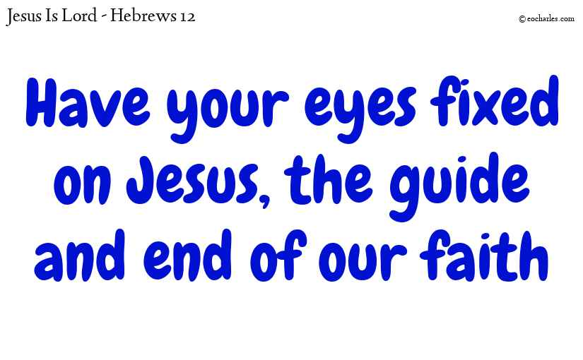 Have your eyes fixed on Jesus, the guide and end of our faith