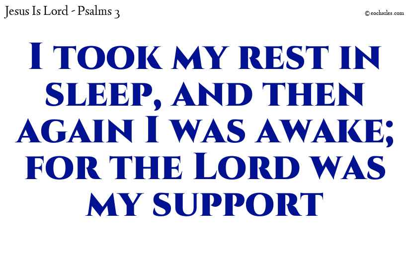 I took my rest in sleep, and then again I was awake; for the Lord was my support