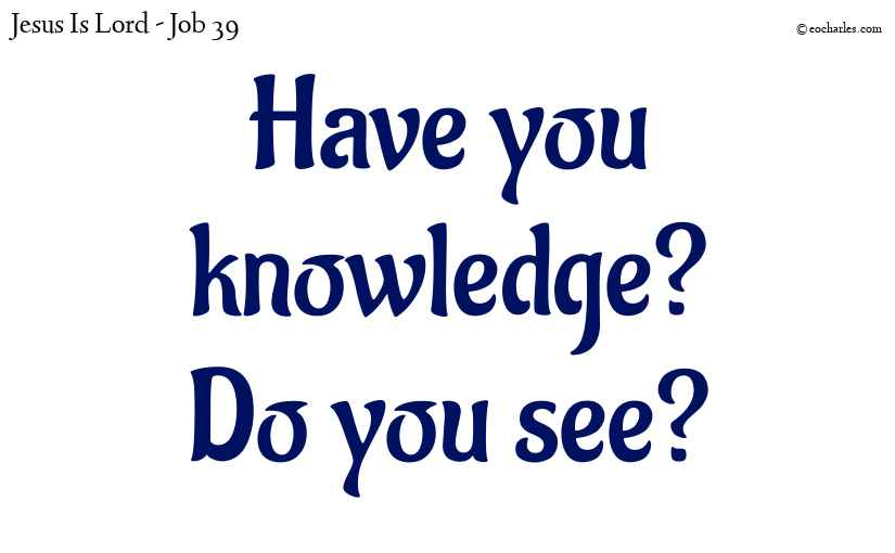 Have you knowledge? do you see?