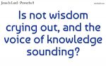 Wisdom calls us