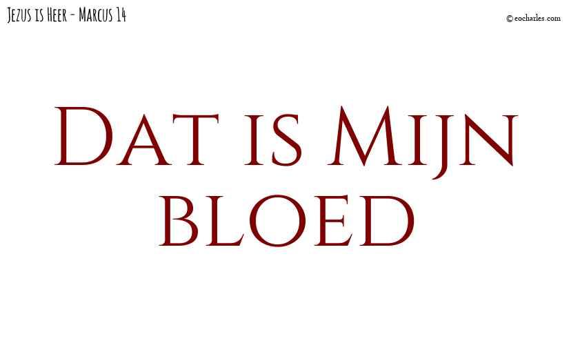 Dat is Mijn bloed