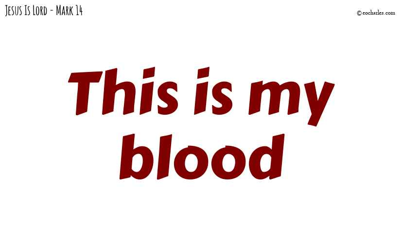 This is my blood