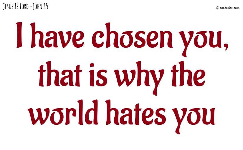 I have chosen you