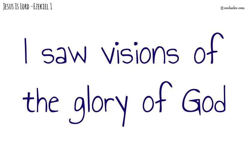 Visions of the glory of God